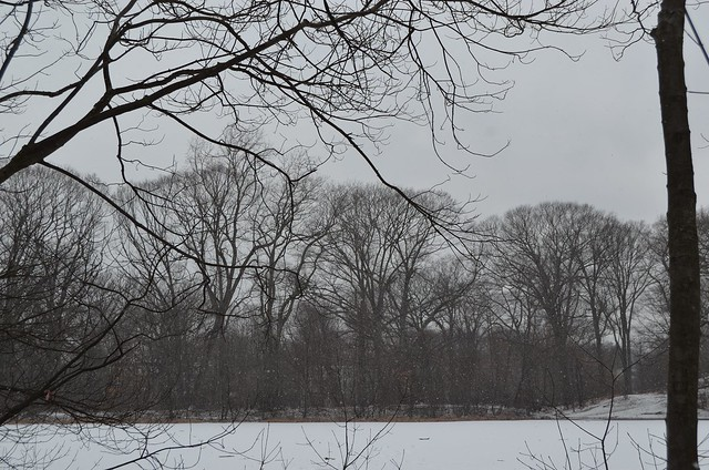 2013-2-1 Jamaica Pond in the Snow 33