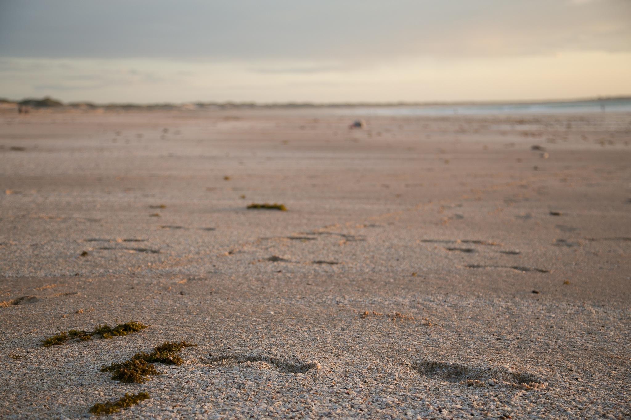 cable-beach2-7.jpg