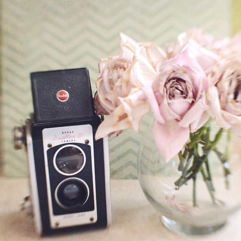 Trina Baker Photograph vintage camera dried roses