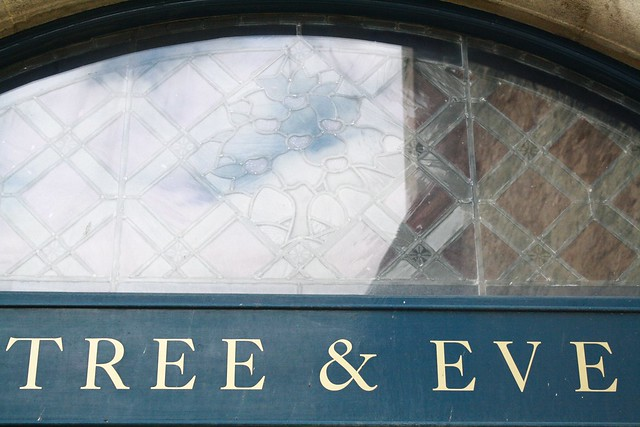 tree and eve typography oxford
