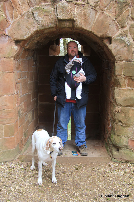 In Kenilworth Castle with my son and hound