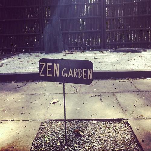 Bonsai garden at lodhi garden #india