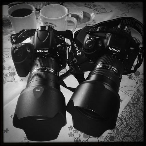 Meet The Nikon Twins by Davidap2009