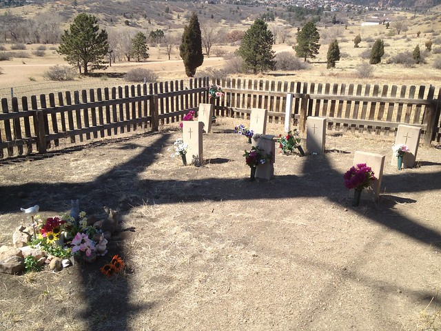 Picture from Pauper's Cemetery