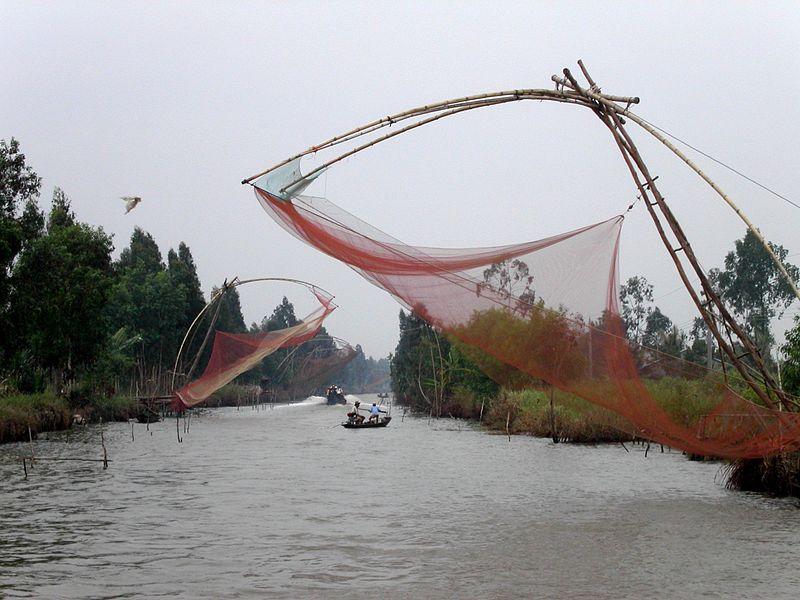 800px-Fishing,_Cà_Mau
