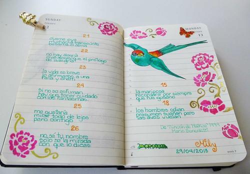 My Bird Diary