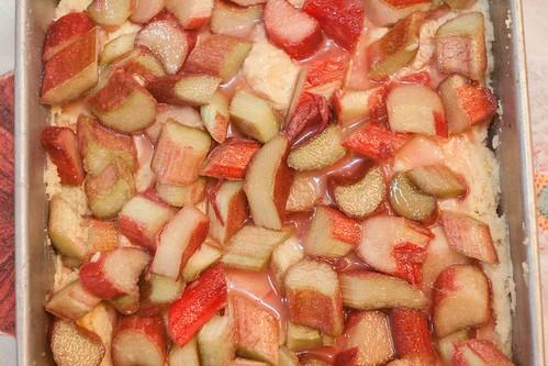 Rhubarb Ricotta Cake (2 of 5)