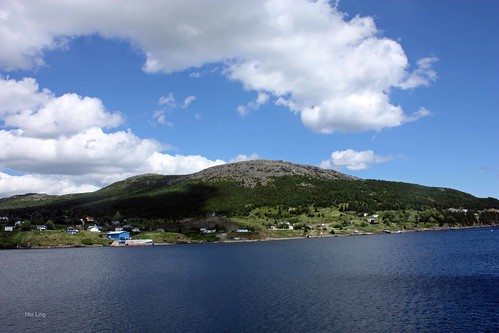 view from Witless Bay