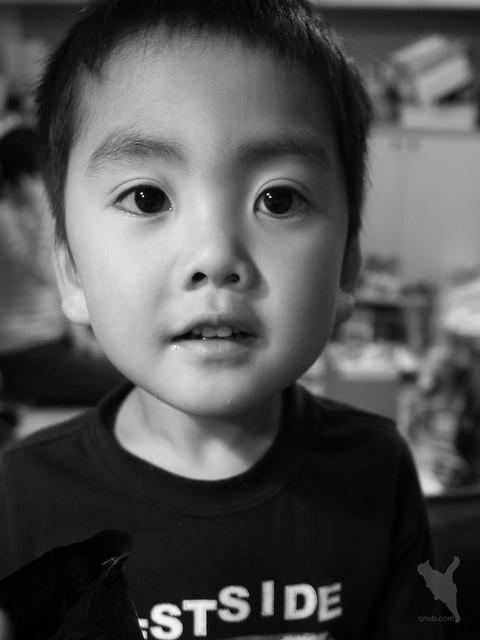 5歳の肖像