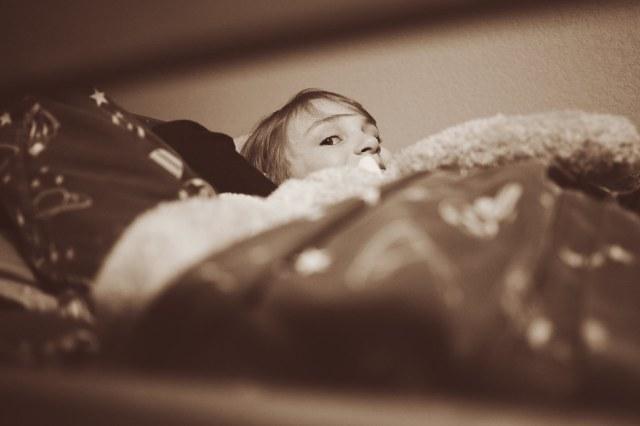 15/52/Portrait -Sneaking in between the bunk rails for a peek.