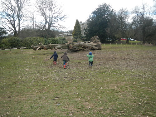 Babbit day - Allestree Park