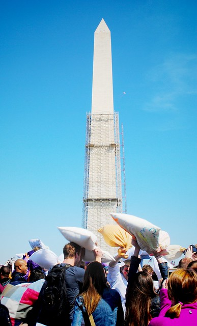 pillow fight at the Washington Monument