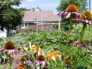 gardens 023