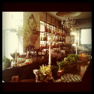 Look at all the herbs that make the drinks at our hotel bar