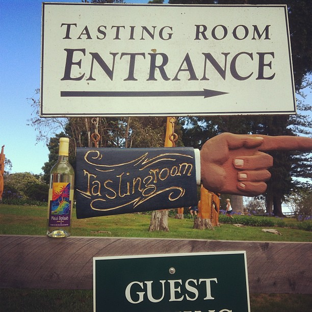 Maui Winery wine tasting!