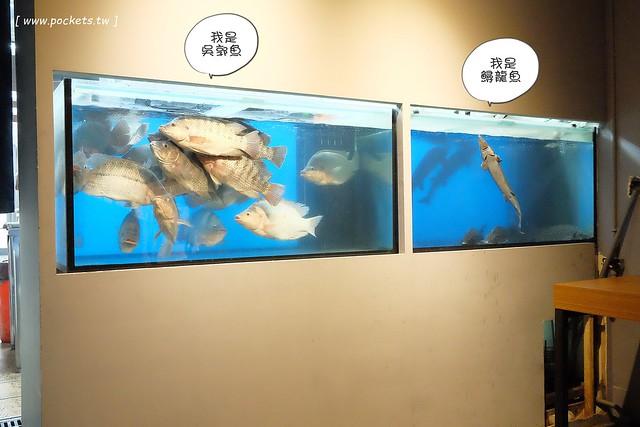 29149973310 ea60ec904e z - 熱血採訪│城裡城外巫山烤魚,台中第一間巫山烤魚,老闆是正宗大陸人,消費打卡送一壺涼茶