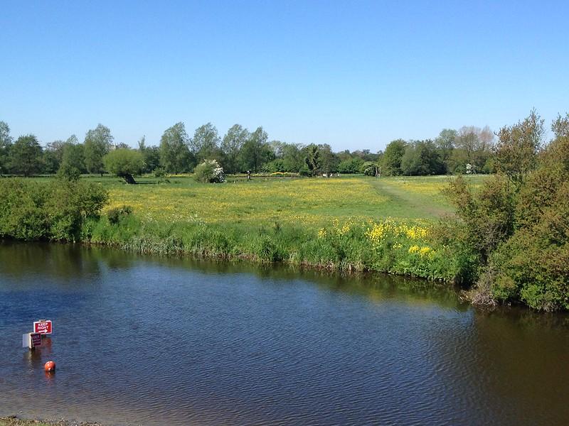 River Stour looking towards Dedham
