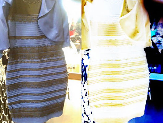 which-color-did-you-see