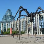Viajefilos en Canada, Ottawa 05