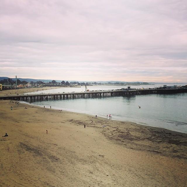 Hello, Santa Cruz.