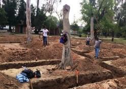 Biblioteca Pública Municipal en morales no implicará tala de árboles: dirección de obras del ayuntamiento