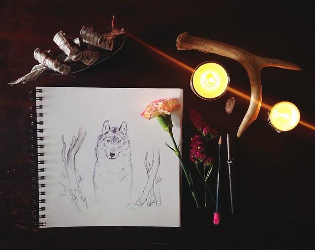 paper wolves.
