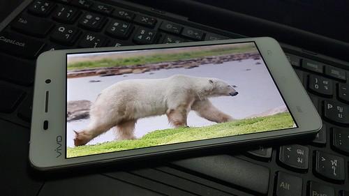 ดูคลิปวิดีโอ 1080p บน Vivo X5