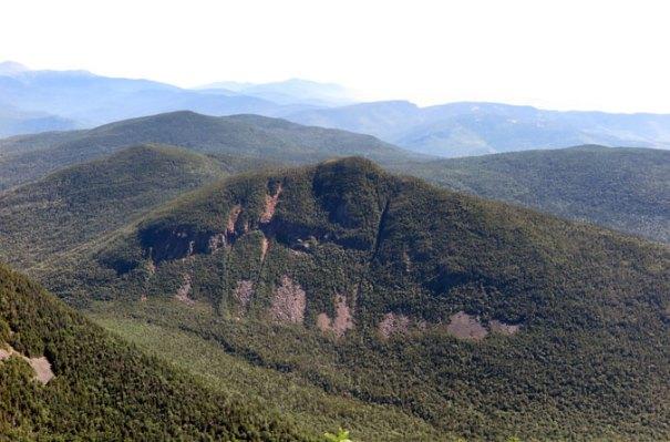 Signal Ridge View Carrigain Notch