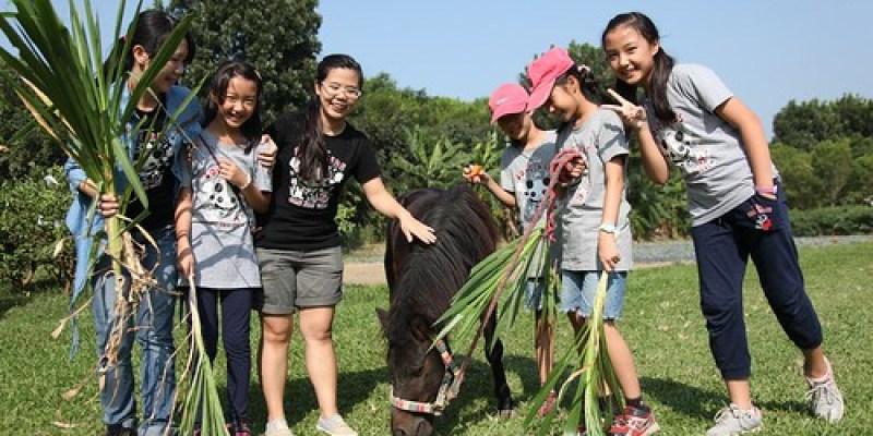台南善化「奇美農場」撿雞蛋(10.2ys)(已關園)