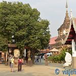 01 Viajefilos en Chiang Mai, Tailandia 015