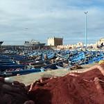 Morocco November 2014