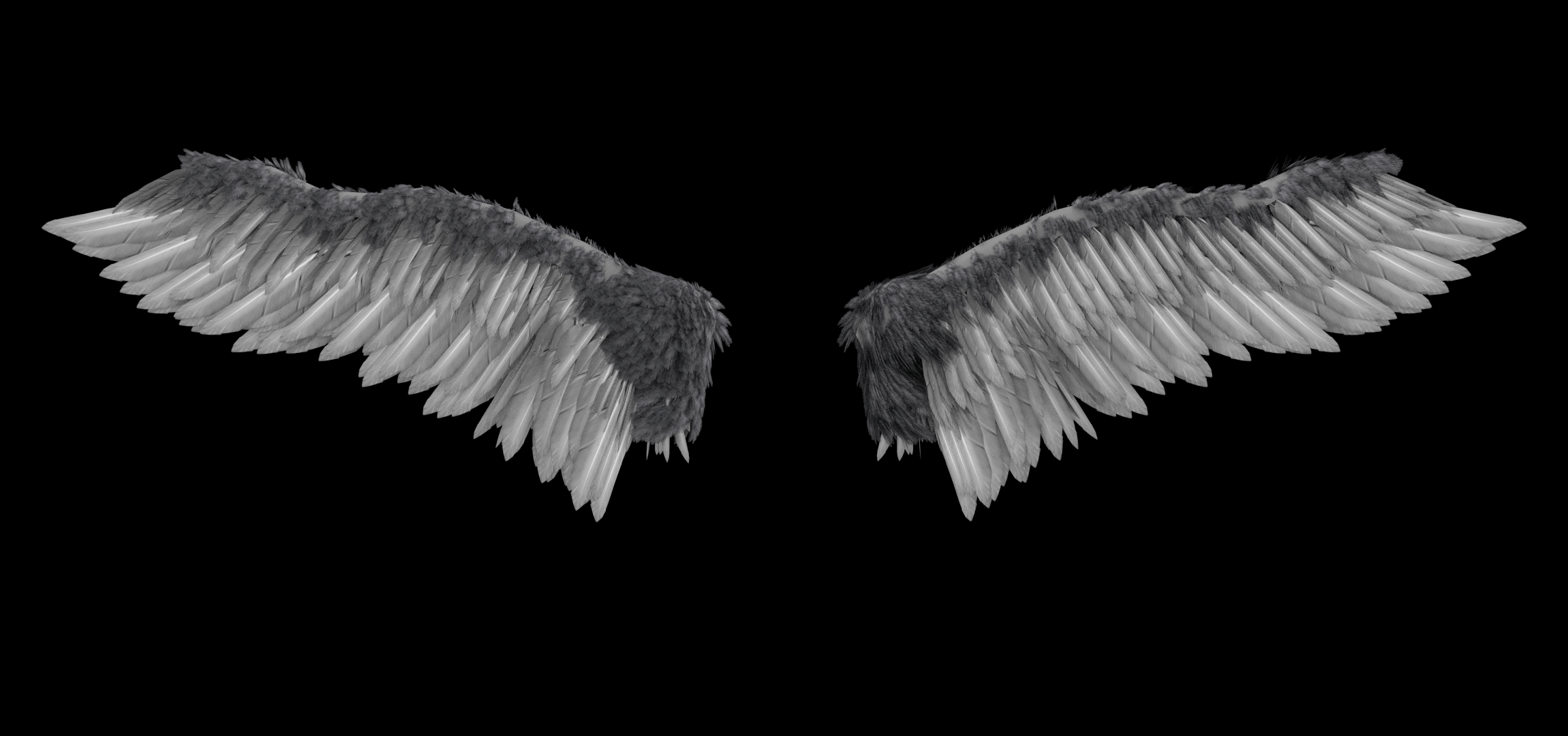 Falling Feathers Wallpaper Angel S Wings 5 19 13 Flickr Photo Sharing