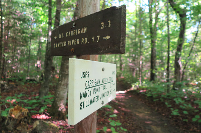 Signal Ridge Trail Junction