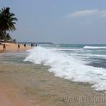 16 Viajefilos en Sri Lanka. Bentota 15