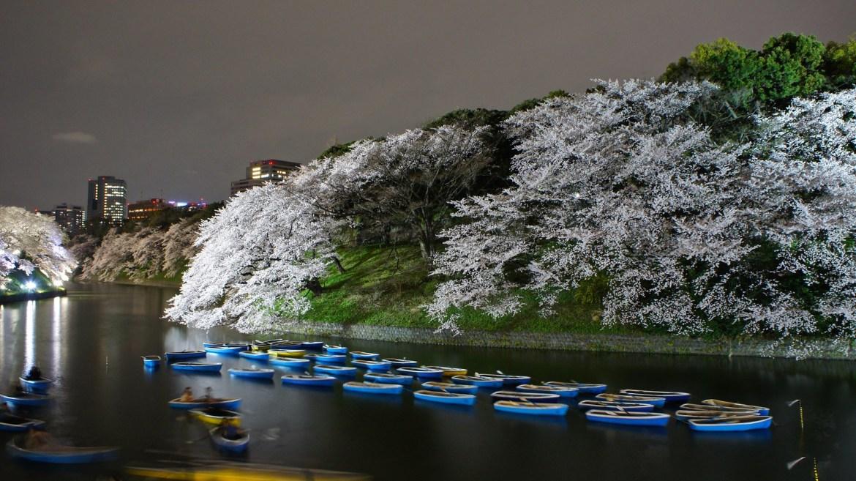 Chidorigafuchi boats