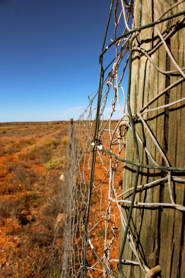 The dog fence i den australske outback