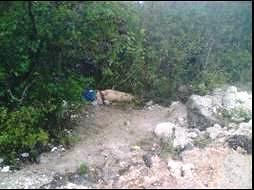 Encuentran muerto a un hombre en Santa Catarina