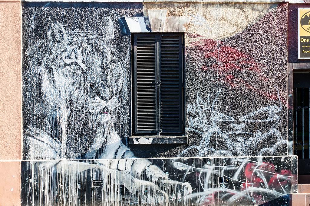 Cape Town Street Art 34