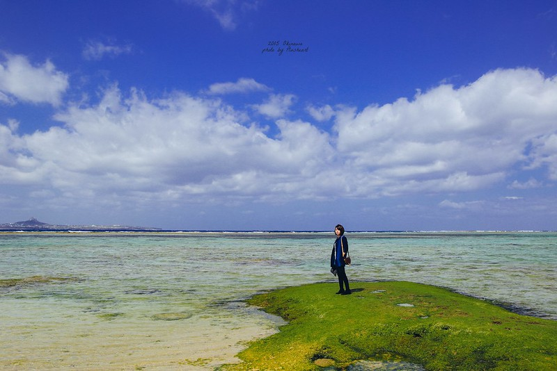 ▌沖繩 ▌ 去沖繩看海、吃龍蝦、賞鯨魚、吃石垣牛...
