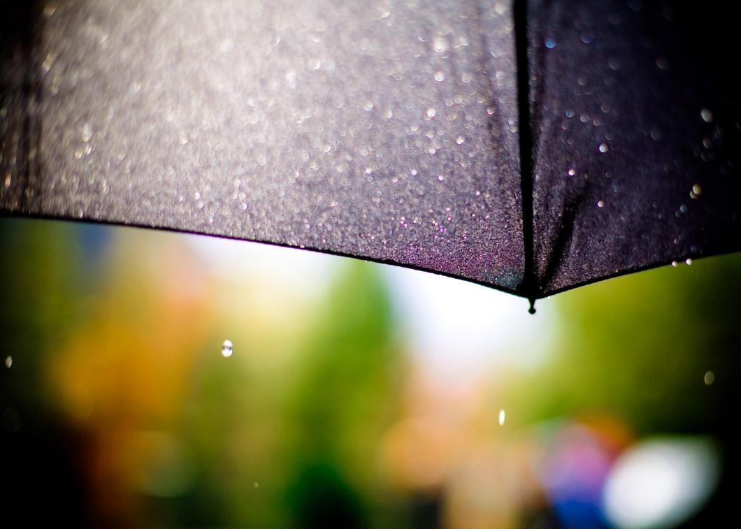 Foto gratis de un paraguas negro bajo la lluvia
