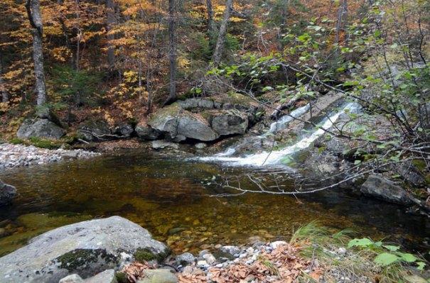 Second Grafton Loop Brook