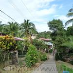07 Viajefilos en Panama. Isla Bastimentos 26
