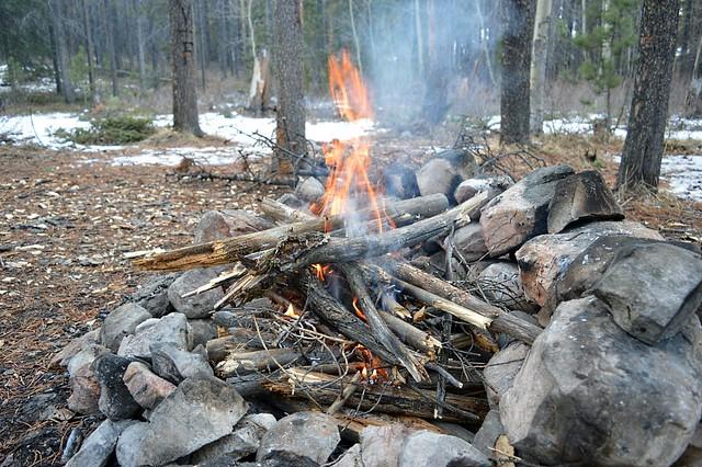 1024 - ve - upside down fire burns fast DSC_2389