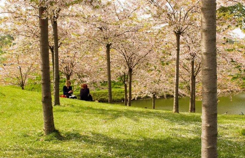 Langelinjepark