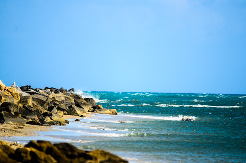 Fort Pierce Inlet Park-1