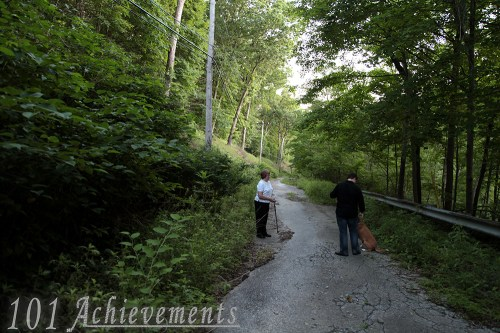 Walk Down Harmony Road