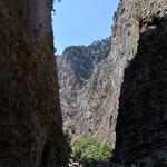 5 Viajefilos en Creta, Omalos-Sougia 09