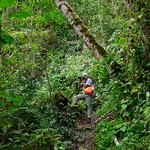 01 Viajfilos en Panama. Sendero Quetzal 49