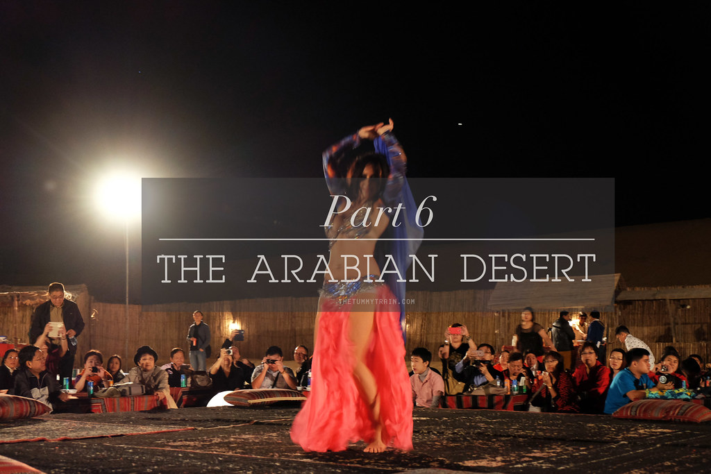 {Dubai 2014} The Dubai Desert Safari Experience