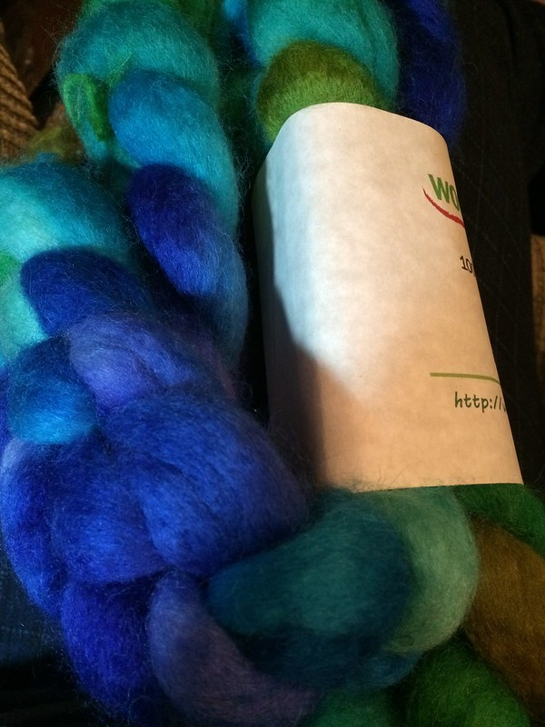 Woolgatherings BFL from the Naiad